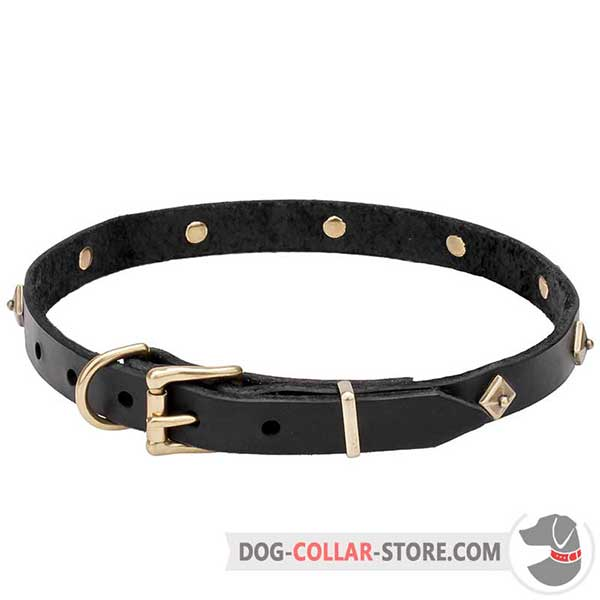 Dog Collar of genuine leather, handmade