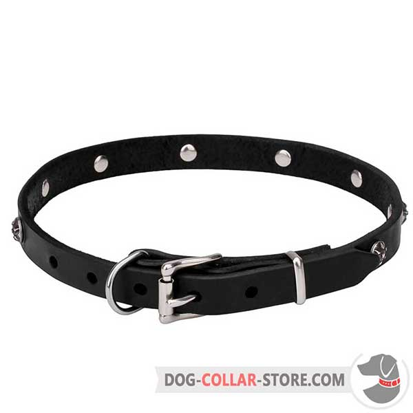 Adjustable Dog Collar of sturdy leather