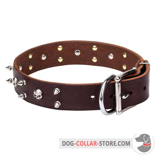 Leather Dog Collar with nickel hardware