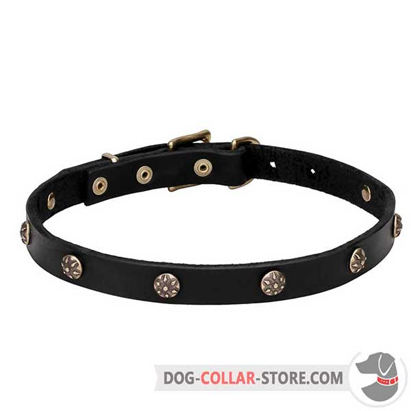 Dog Collar of narrow leather strap