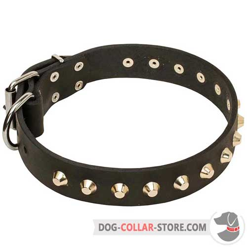 Dog Leather Collar with exclusive decorations