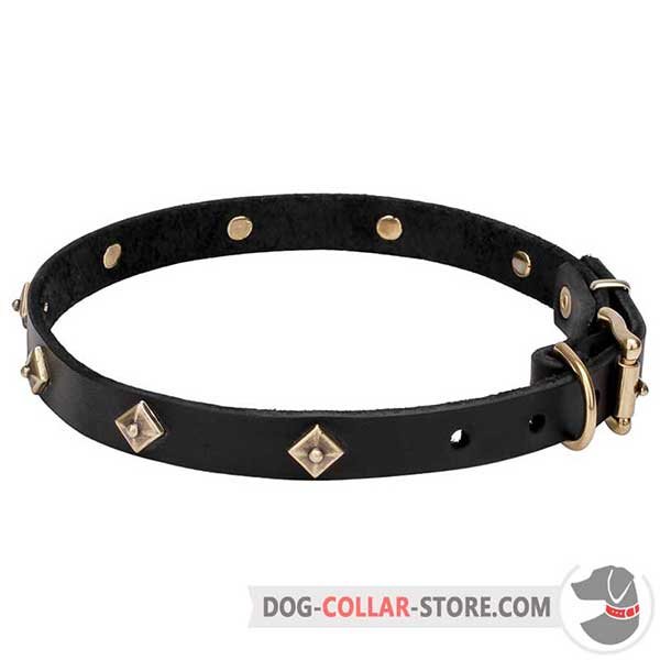 Dog Collar with pyramidal studs