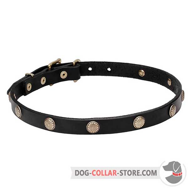 Dog Collar with studs: flower petals engraving