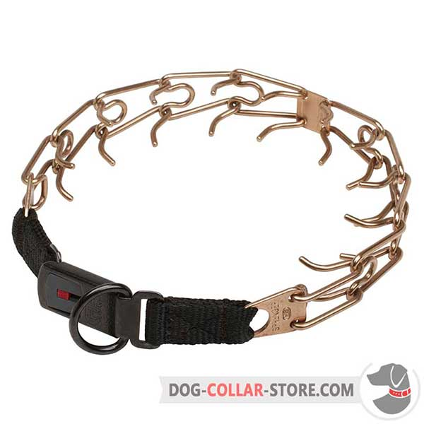 Dog training pinch collar equipped with click lock buckle