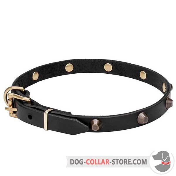 Leather Dog Walking Collar, wide range of sizes
