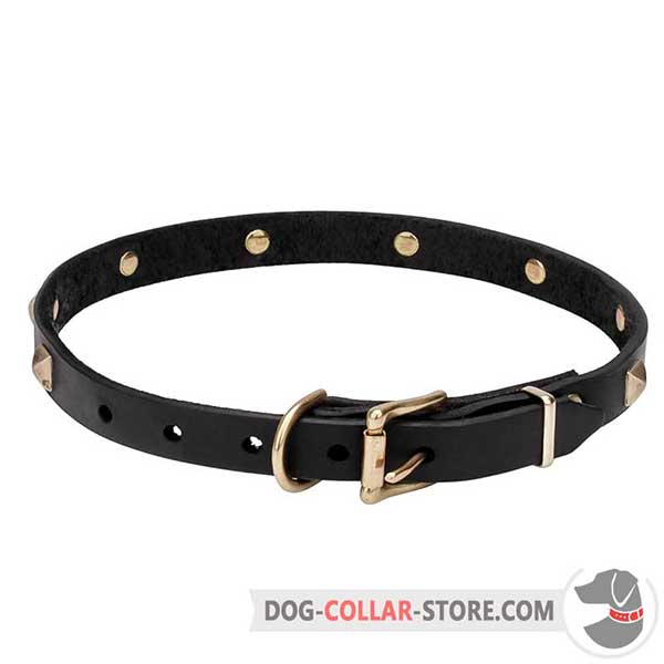 Dog Collar of sturdy leather, back side
