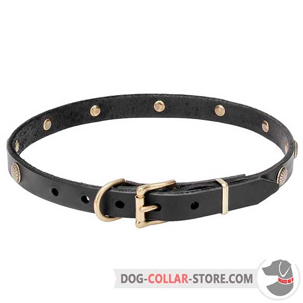 Dog Collar of genuine leather, belt-type buckle for adjustment