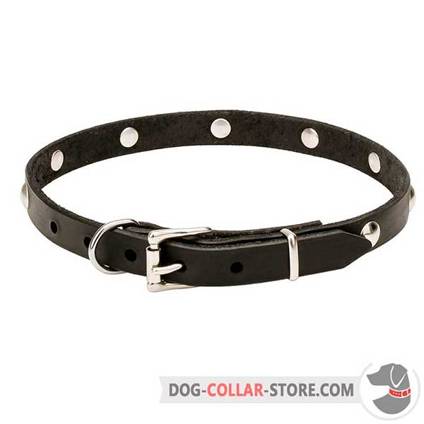 Leather Dog Collar, reliable fittings