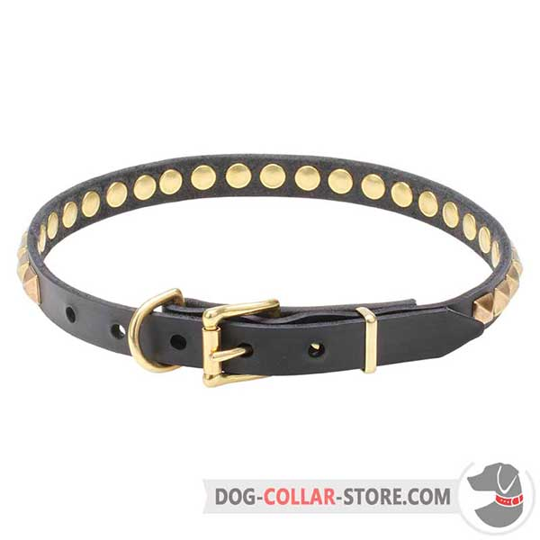 Leather Dog     Collar, strong fittings