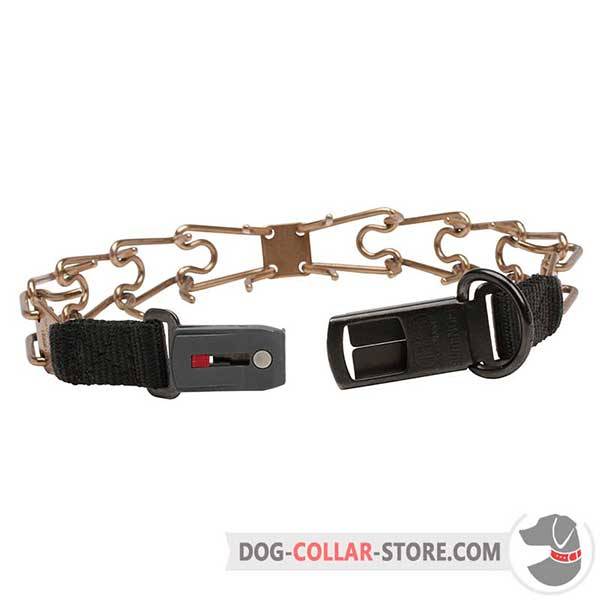 Dog training prong collar, back view