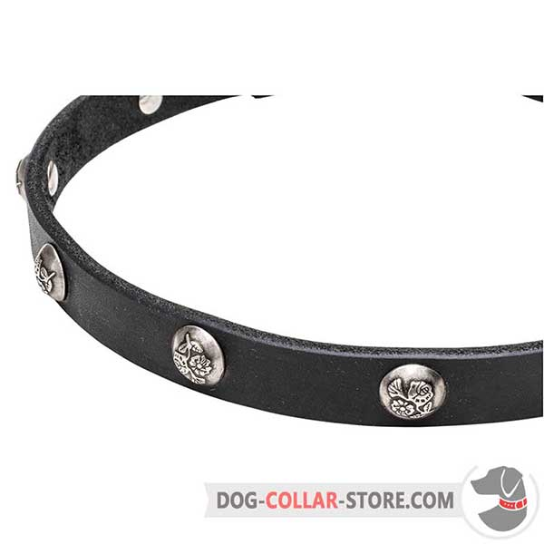 Nickel-plated     studs with engraved flowers on dog collar