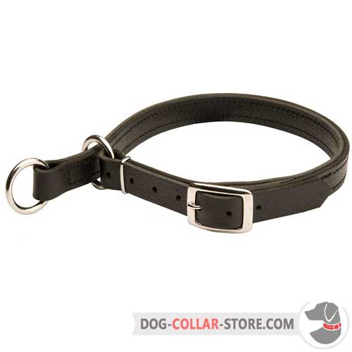 Strong Leather Dog Choke Collar Adjustable