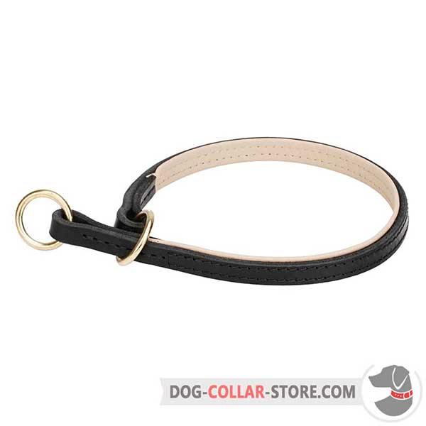 Dog Choke Collar with Brass-Plated Rings