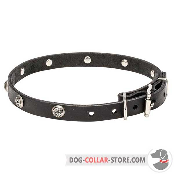Dog Leather Collar, perfect design