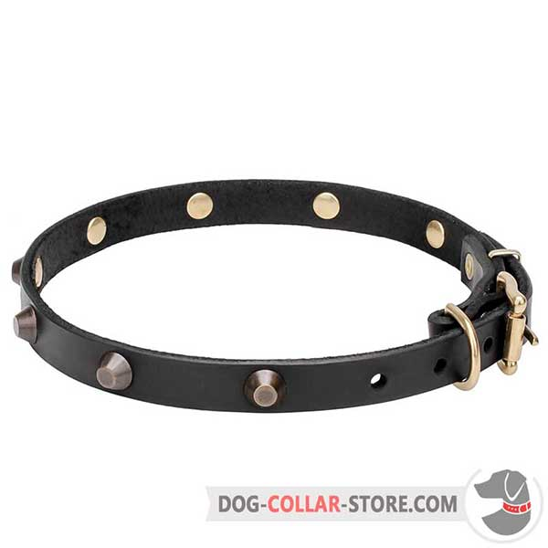 Long-Lasting Leather Dog Collar, riveted decorations