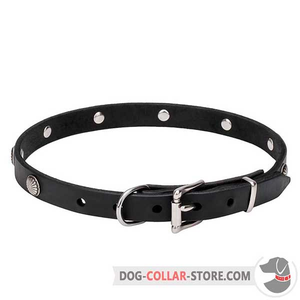 Dog Collar with belt-type buckle