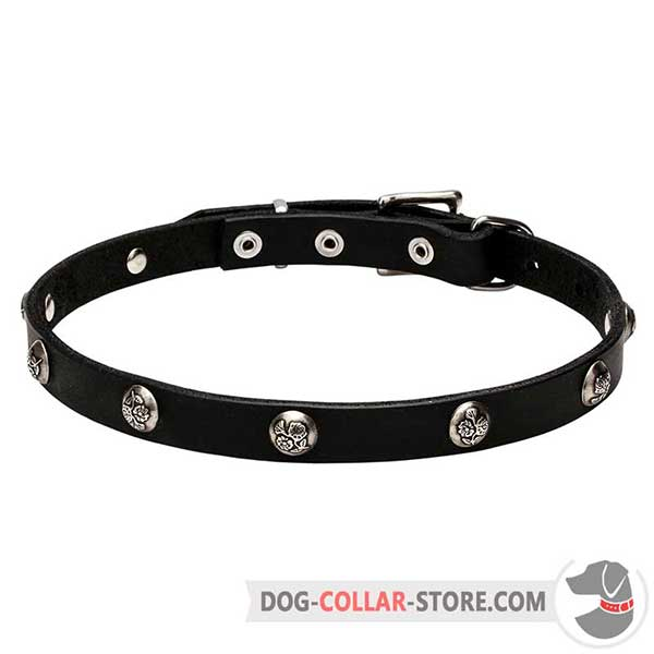 Leather Dog Collar, beautiful design