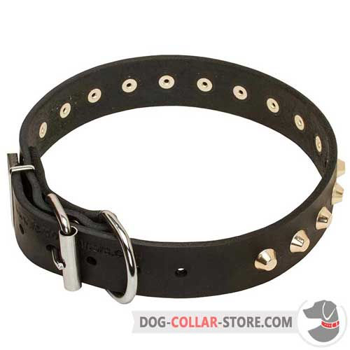 Leather Dog Collar with nickel-plated hardware