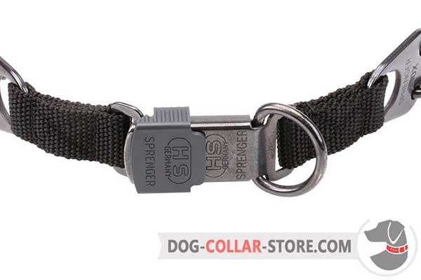 Dog pinch collar's buckle