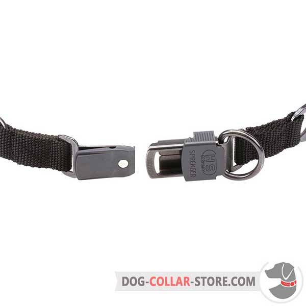 Metal buckle of dog sport pinch collar