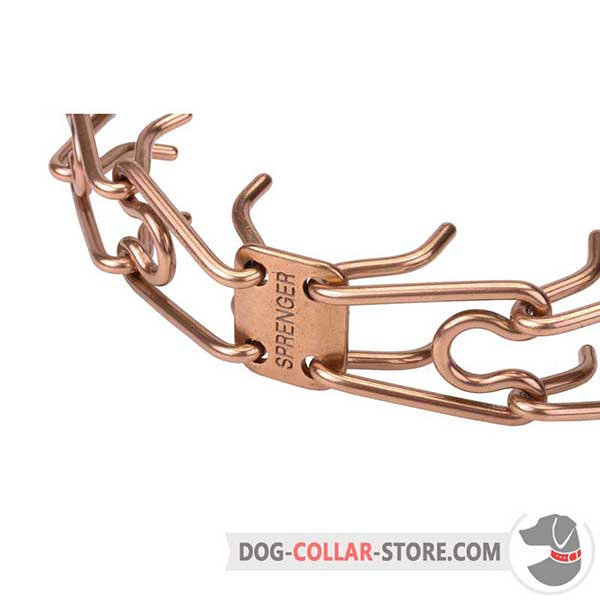 Dog pinch collar's links