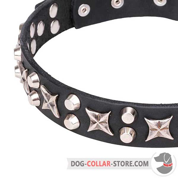 Nickel-plated Cones and Stars on Dog Collar