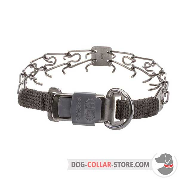 Dog pinch collar, back side