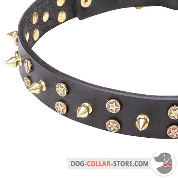 Dog leather collar: stars and spikes