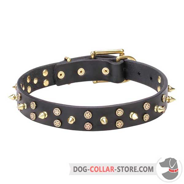 Dog Collar, stars and spikes fixed with rivets