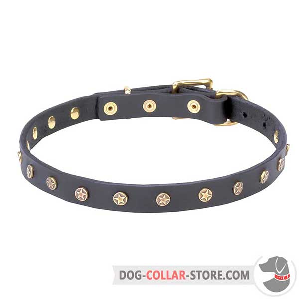 Dog leather collar with riveted stars