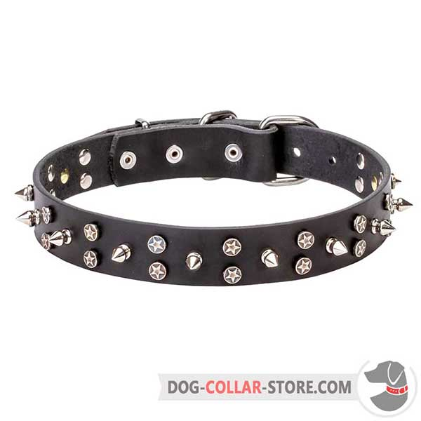 Dog leather collar: amazing exterior