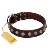 """Lucky Silver"" Designer Handmade FDT Artisan Brown Leather dog Collar"