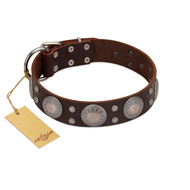 """Imperial Legate"" FDT Artisan Brown Leather dog Collar with Big Round Plates"