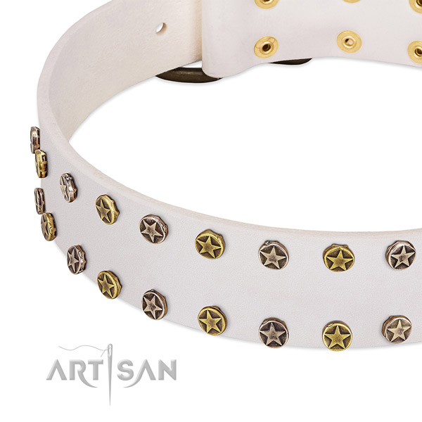 Remarkable studs on natural leather collar for your canine