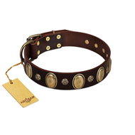 """Bronze Idol"" FDT Artisan Brown Leather dog Collar with Eye-catchy Ovals and Small Studs"