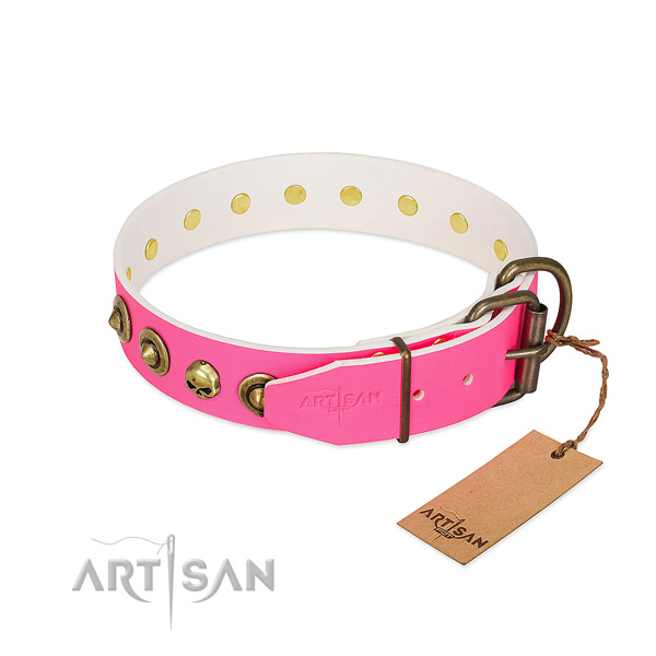 Leather collar with significant studs for your four-legged friend