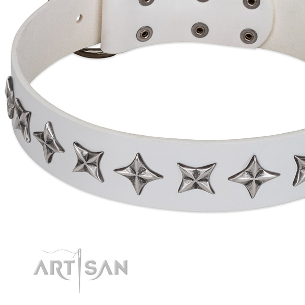 Comfy wearing embellished dog collar of finest quality full grain leather