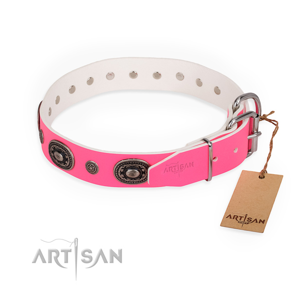 Walking best quality dog collar with strong buckle