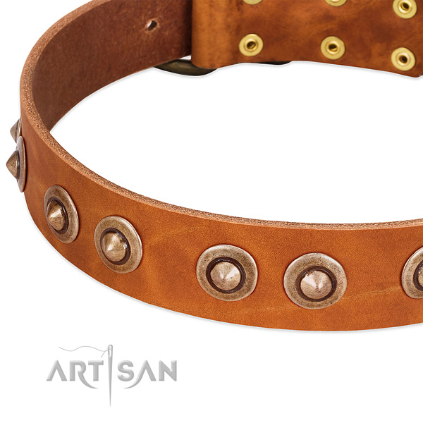 Rust-proof hardware on leather dog collar for your dog