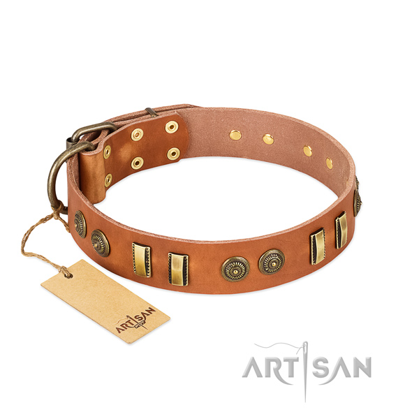 Reliable D-ring on genuine leather dog collar for your pet