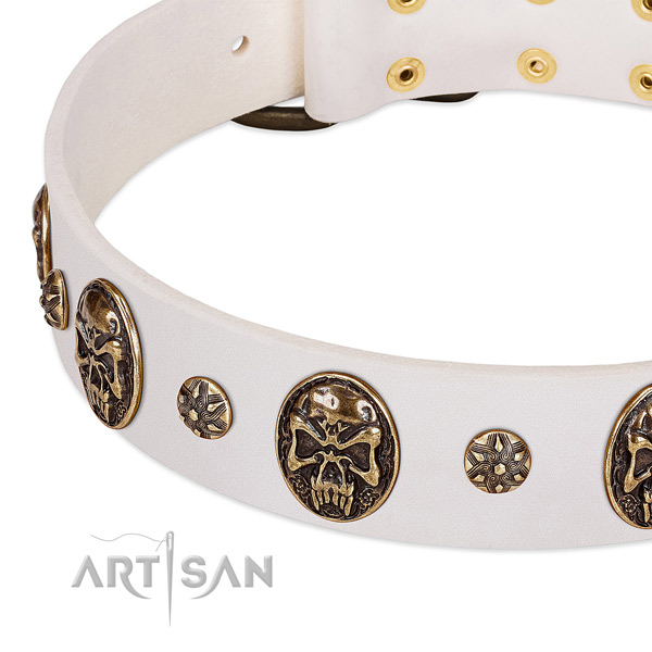 Strong decorations on full grain leather dog collar for your canine