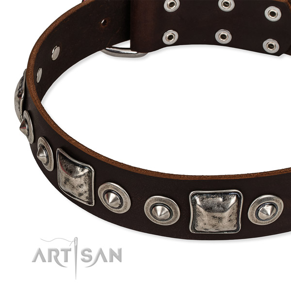 Full grain leather dog collar made of top rate material with decorations