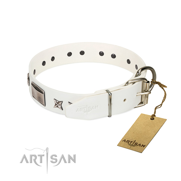 Extraordinary collar of full grain genuine leather for your handsome canine