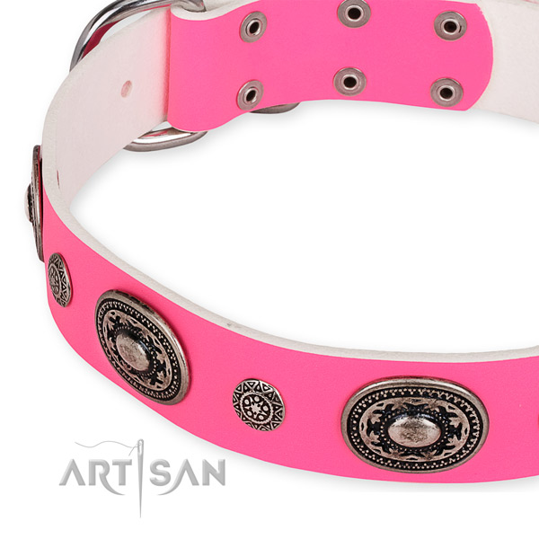 Full grain leather dog collar with fashionable rust resistant adornments