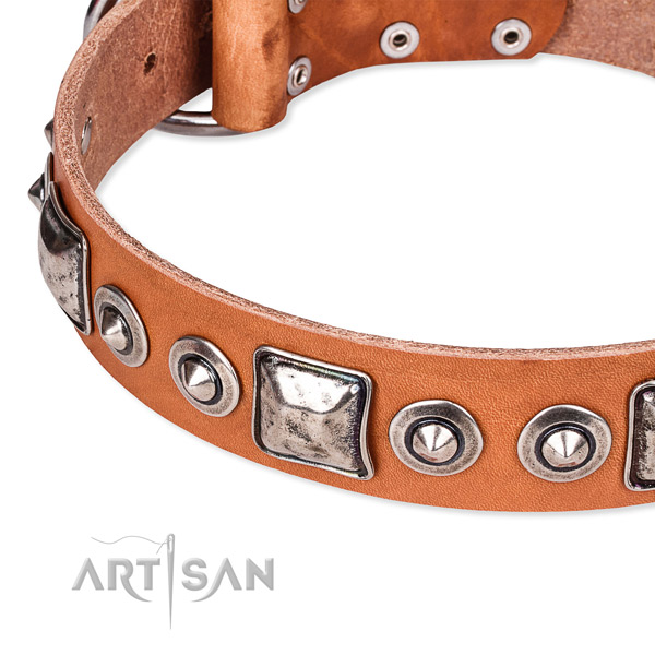 Quality full grain natural leather dog collar made for your impressive pet