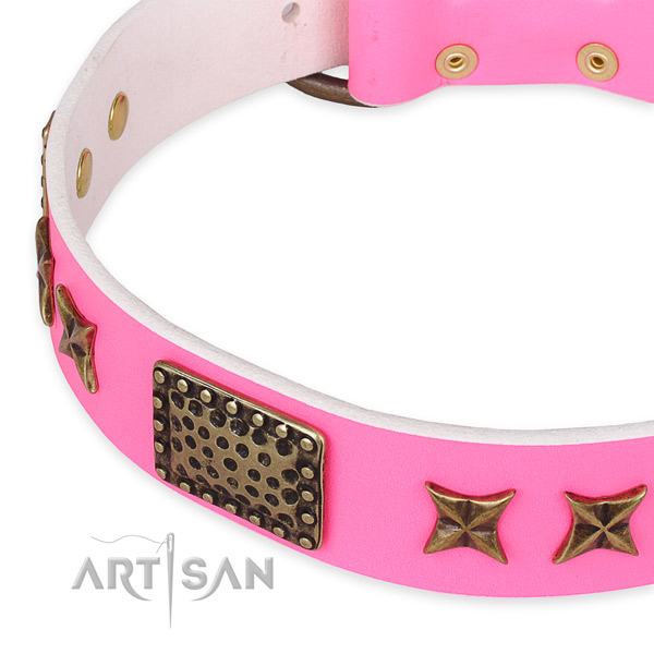 Leather collar with rust-proof fittings for your lovely dog