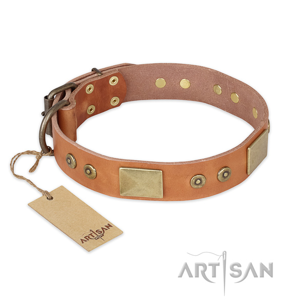 Adjustable full grain leather dog collar for stylish walking