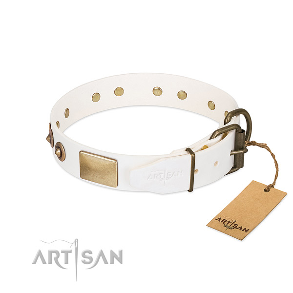 Rust resistant decorations on full grain natural leather dog collar for your doggie