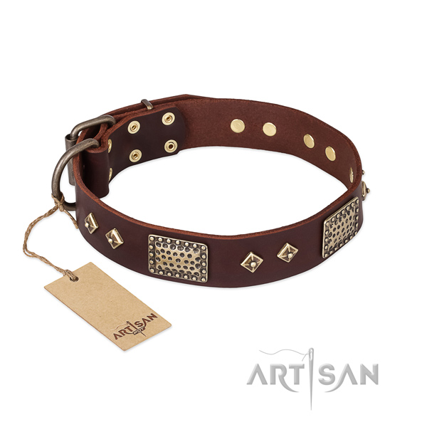 Studded full grain leather dog collar for comfy wearing