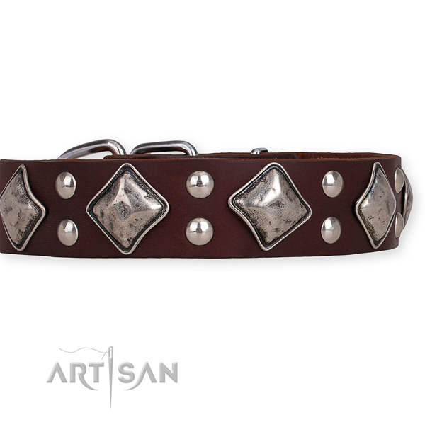 Full grain natural leather dog collar with designer durable embellishments